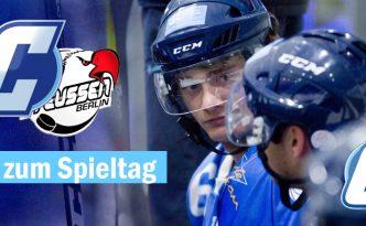 Eishockey Regionalliga Ost